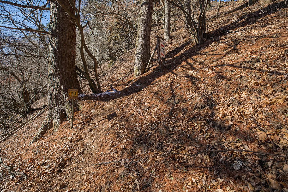【独鈷山】登山百景-沢山湖コースと合流