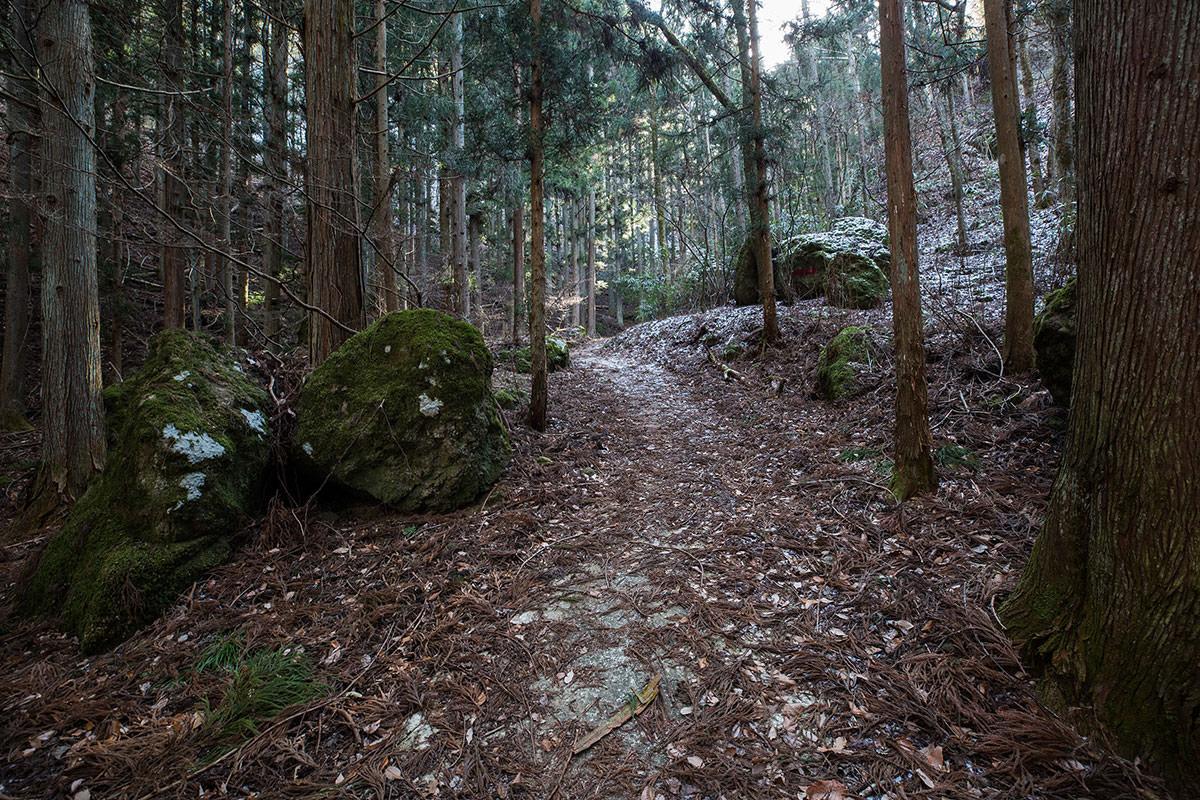 【独鈷山】登山百景-大きな石が多い