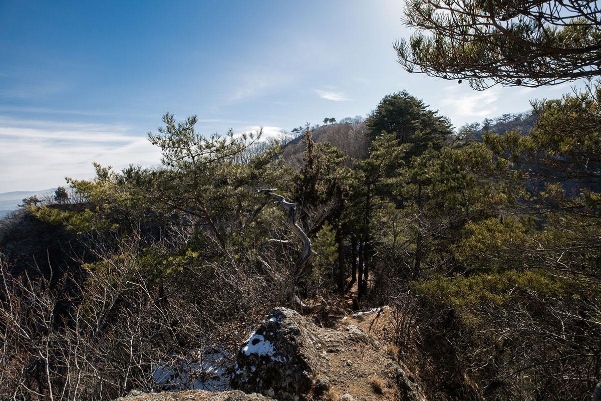【独鈷山】登山百景-山頂方向