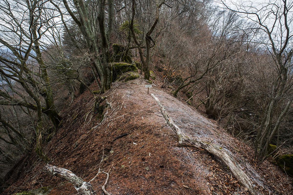 後ろ側には登山道が無いという看板