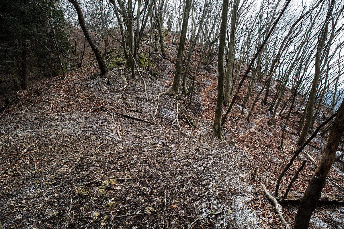 登山道を見失った場所
