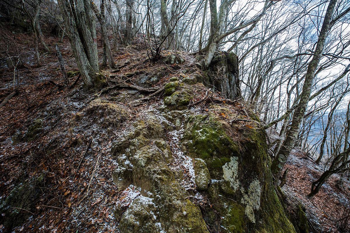 岩の上は凍っている