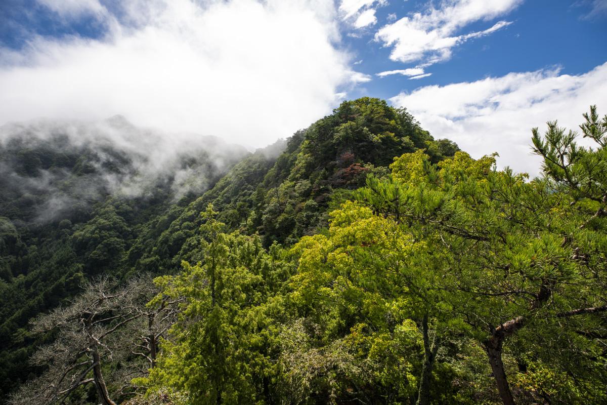 雨首から見る鉄城山