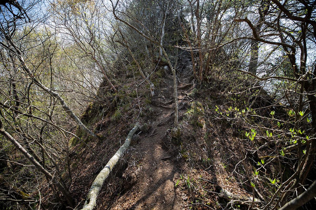 岩峰からの細尾根