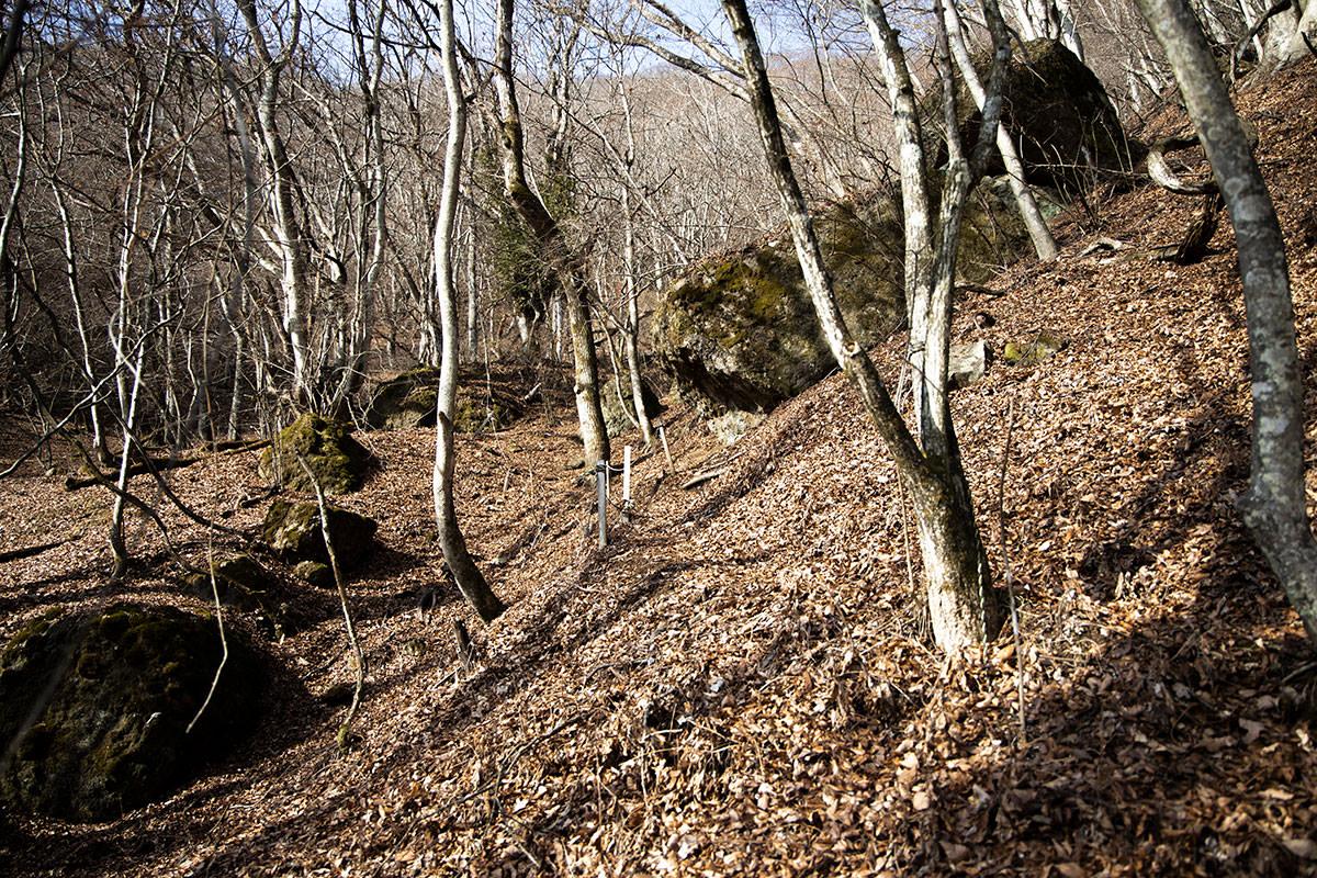 独鈷山-登山道が分かりづらい
