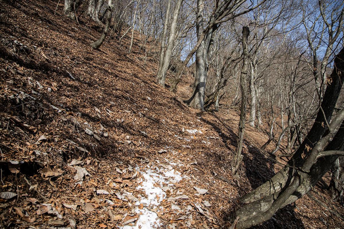 独鈷山-少しだけ雪が残っている
