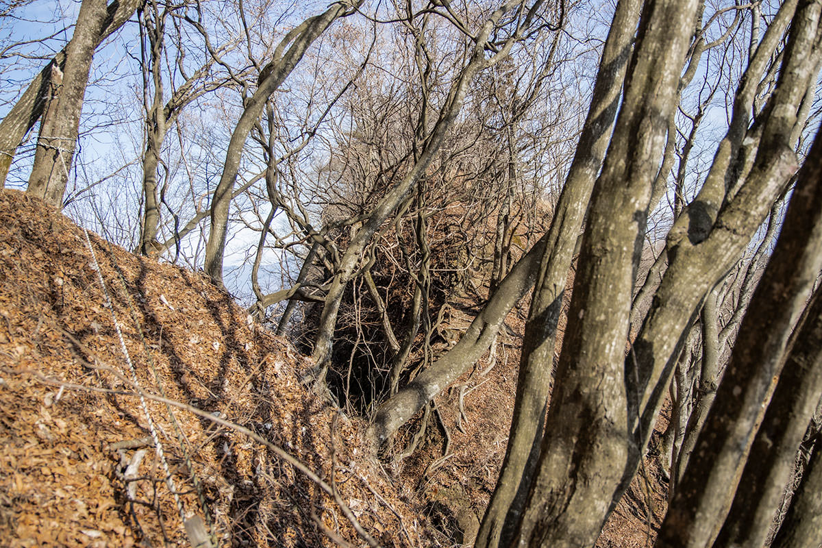 独鈷山-そこに見える尾根も誰かが歩いていそうだ