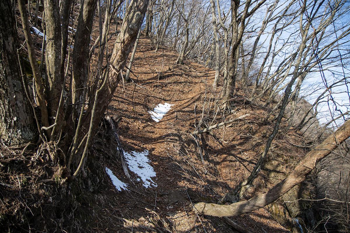 独鈷山-トラバースの狭い登山道