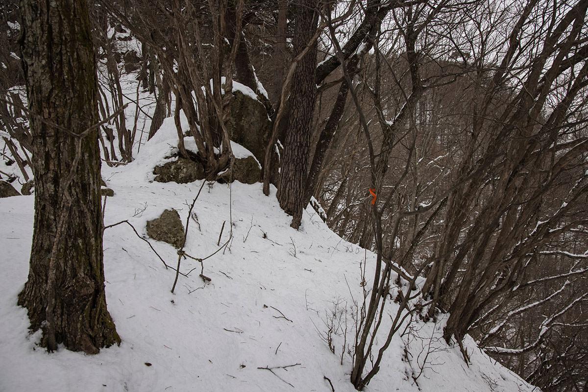 独鈷山-右にある山頂へ向かってトラバース