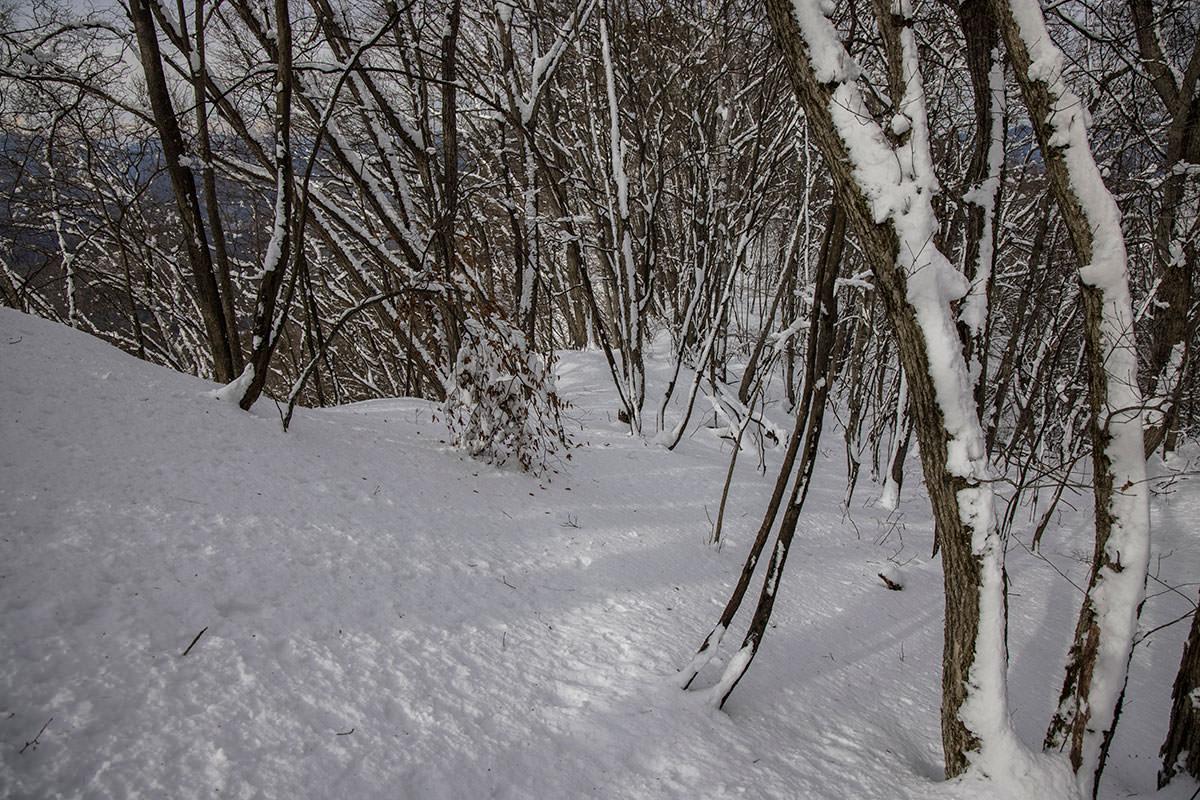 独鈷山-下山は西前山コースへ