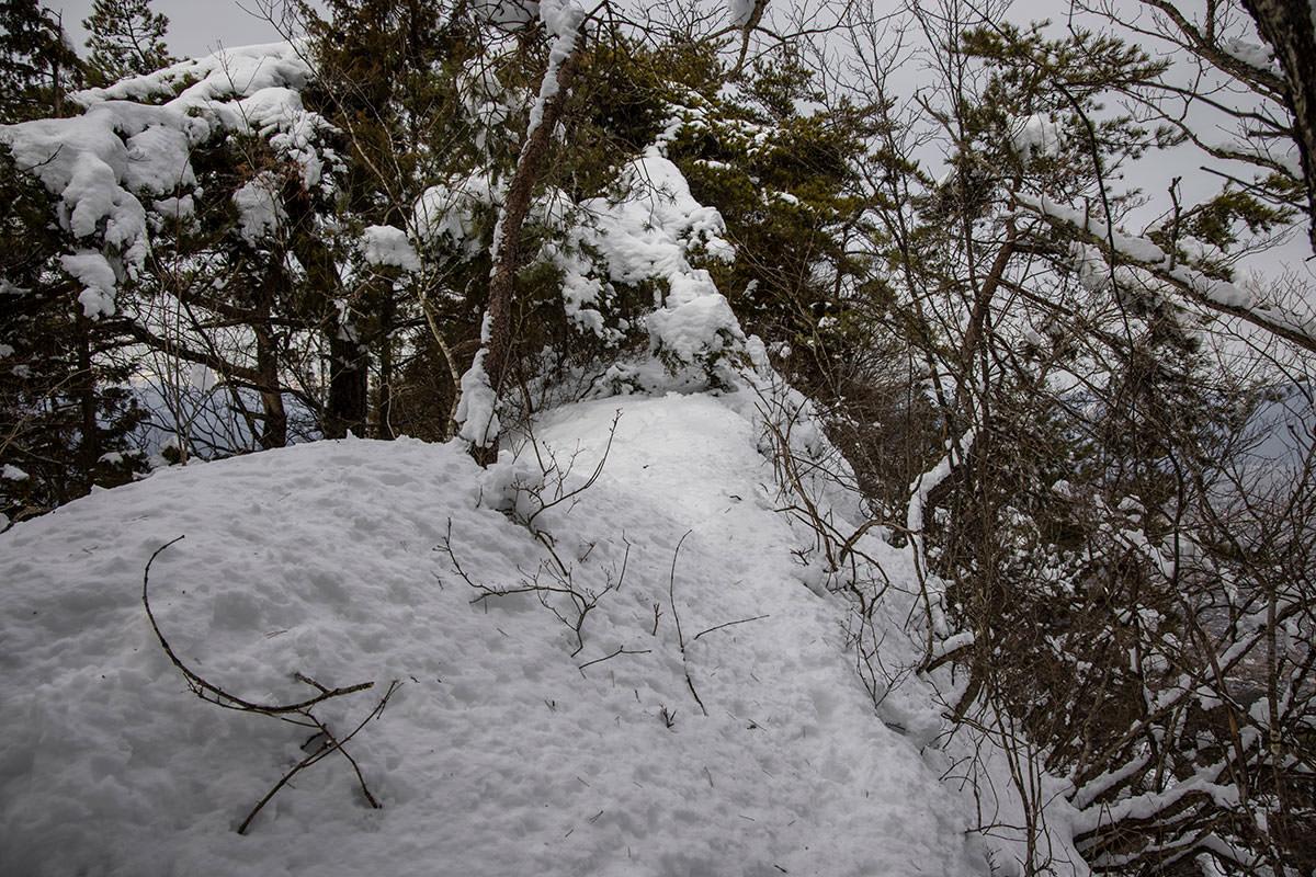独鈷山-松の枝が積雪で邪魔になってる