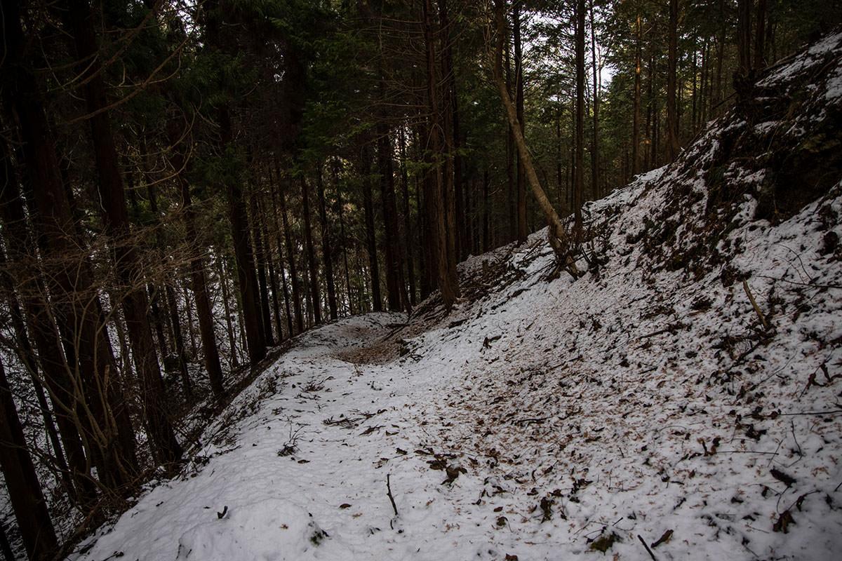 独鈷山-登山道が広くなった