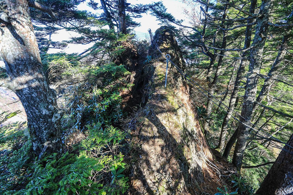 カミソリ岩の上