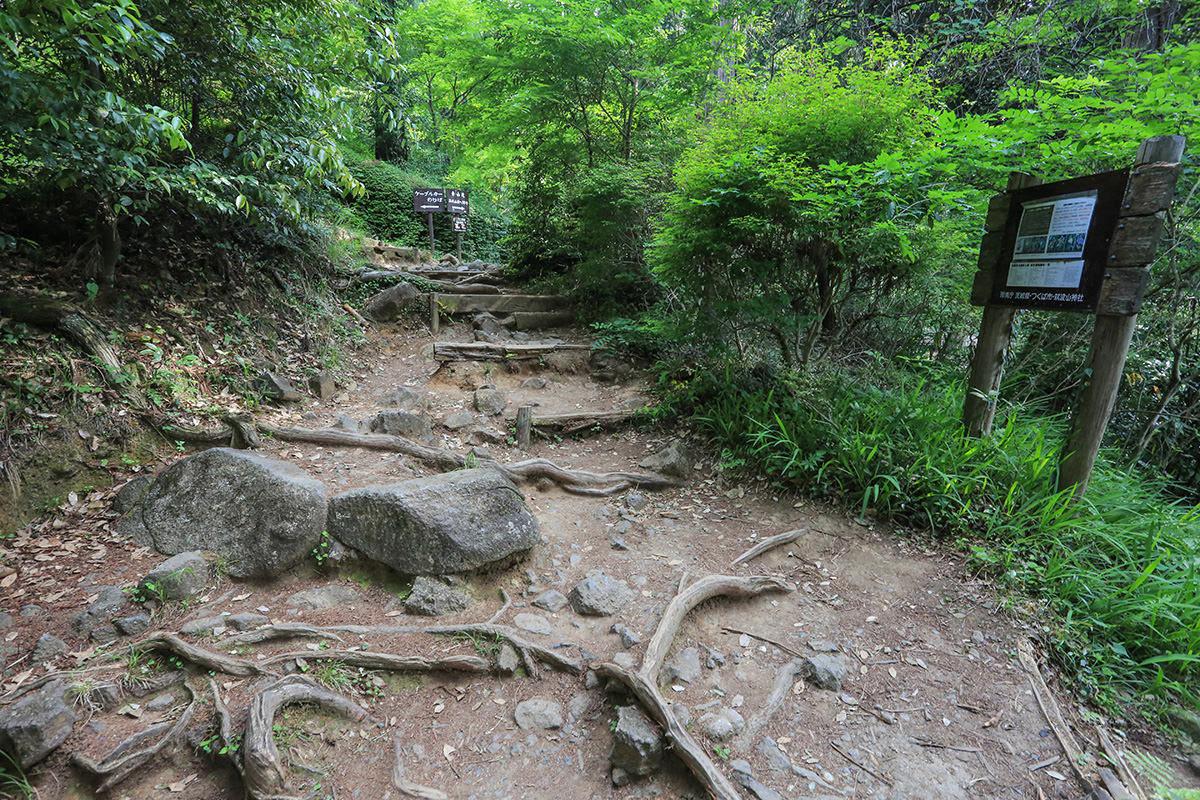 【筑波山】登山百景-看板もいっぱい