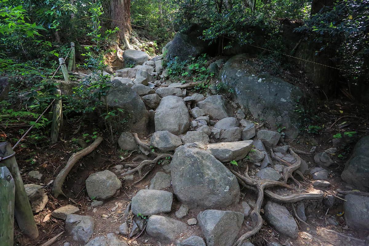 【筑波山】登山百景-石がいっぱい