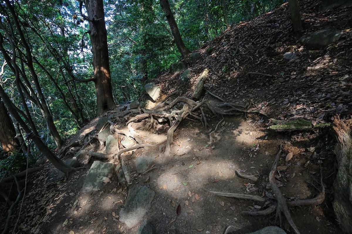 【筑波山】登山百景-いったん坂は緩まる