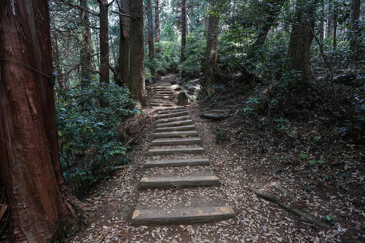 【筑波山 白雲橋コース】登山百景-登山道には階段がある