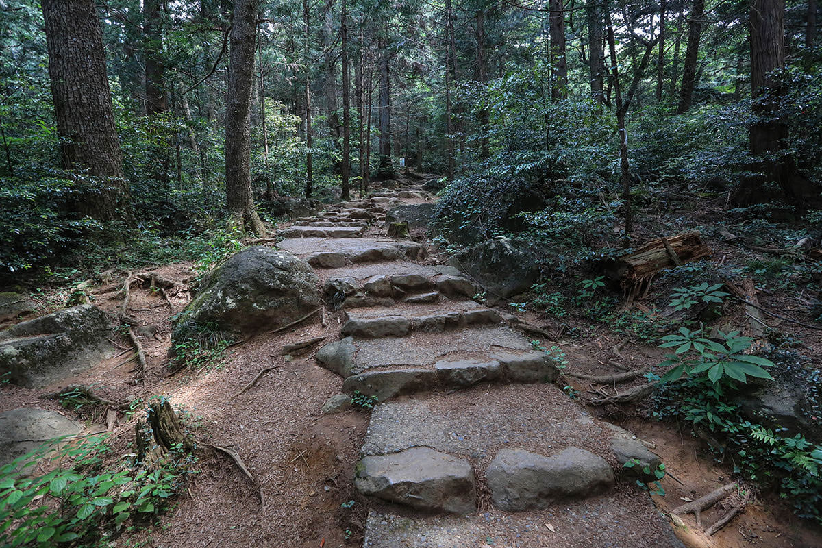 【筑波山 白雲橋コース】登山百景-階段を登っていく