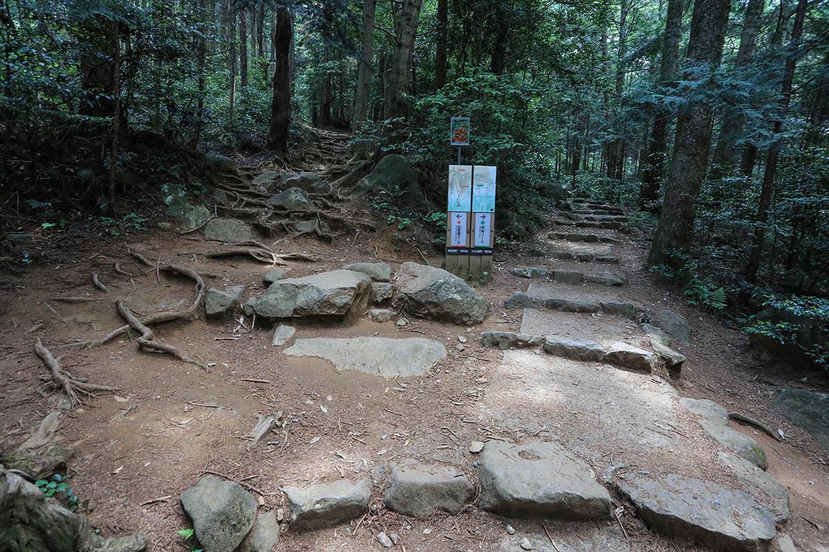 【筑波山】登山百景-分岐