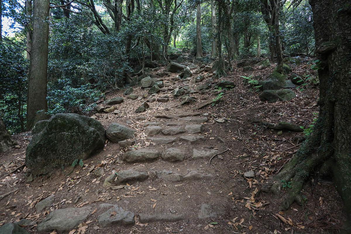【筑波山】登山百景-徐々に急になる