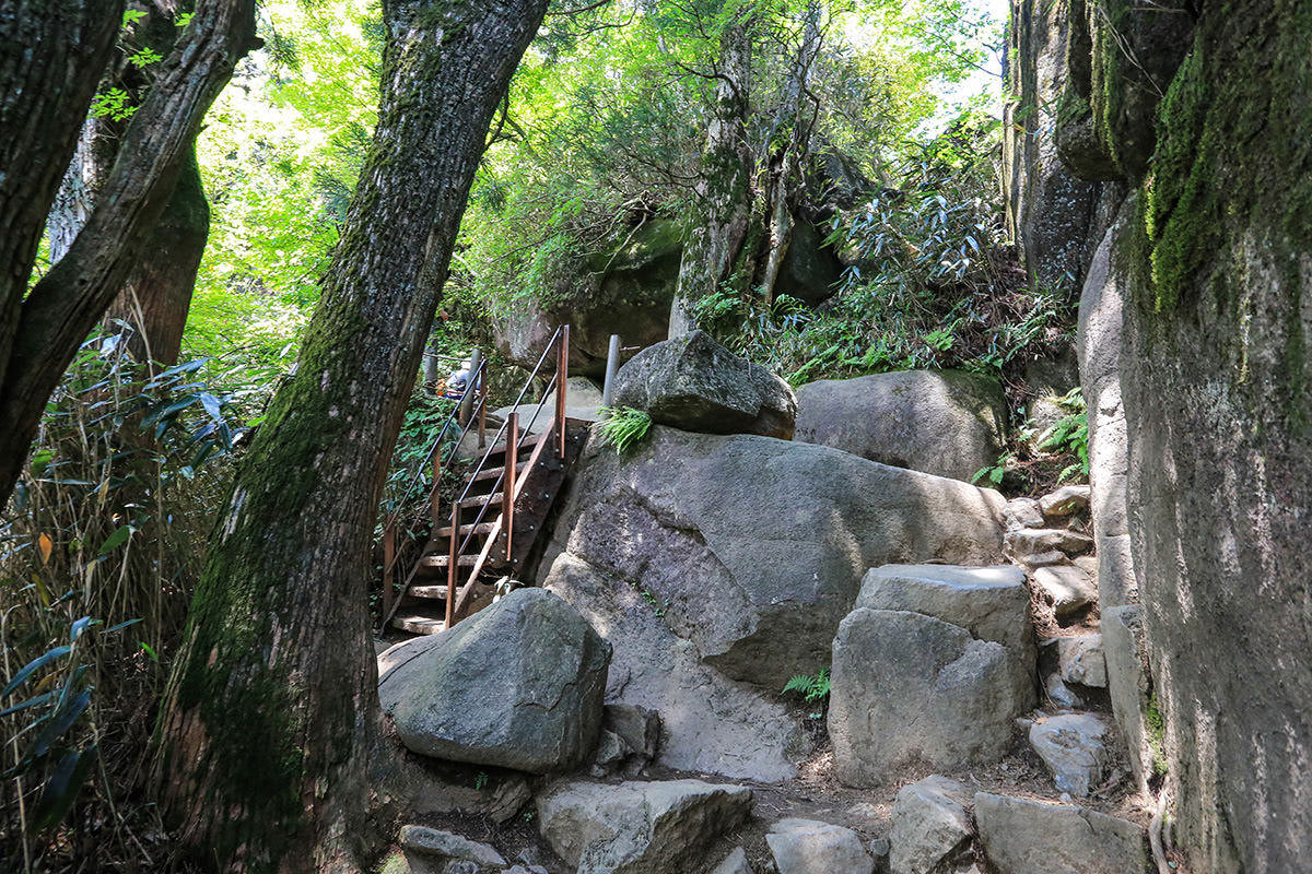 【筑波山 白雲橋コース】登山百景-胎内くぐりへ