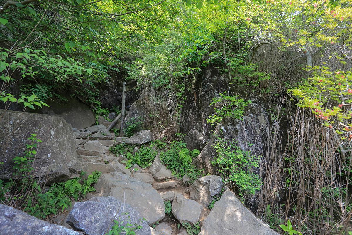 【筑波山 白雲橋コース】登山百景-女体山へ登る
