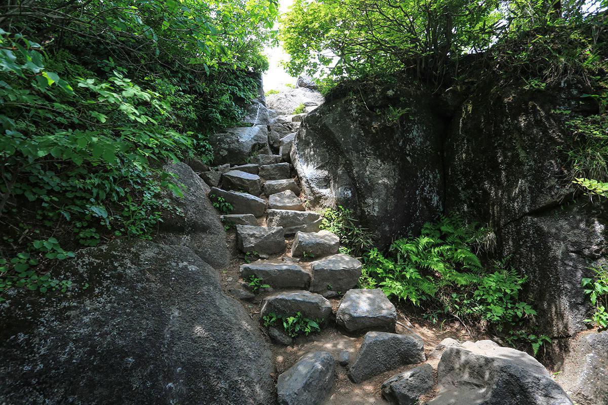 【筑波山 白雲橋コース】登山百景-山頂近くの登り