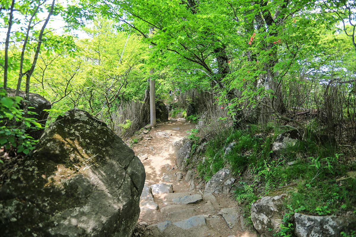 【筑波山 白雲橋コース】登山百景-女体山を下りる