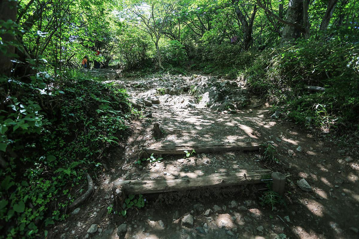 【筑波山】登山百景-わりと岩