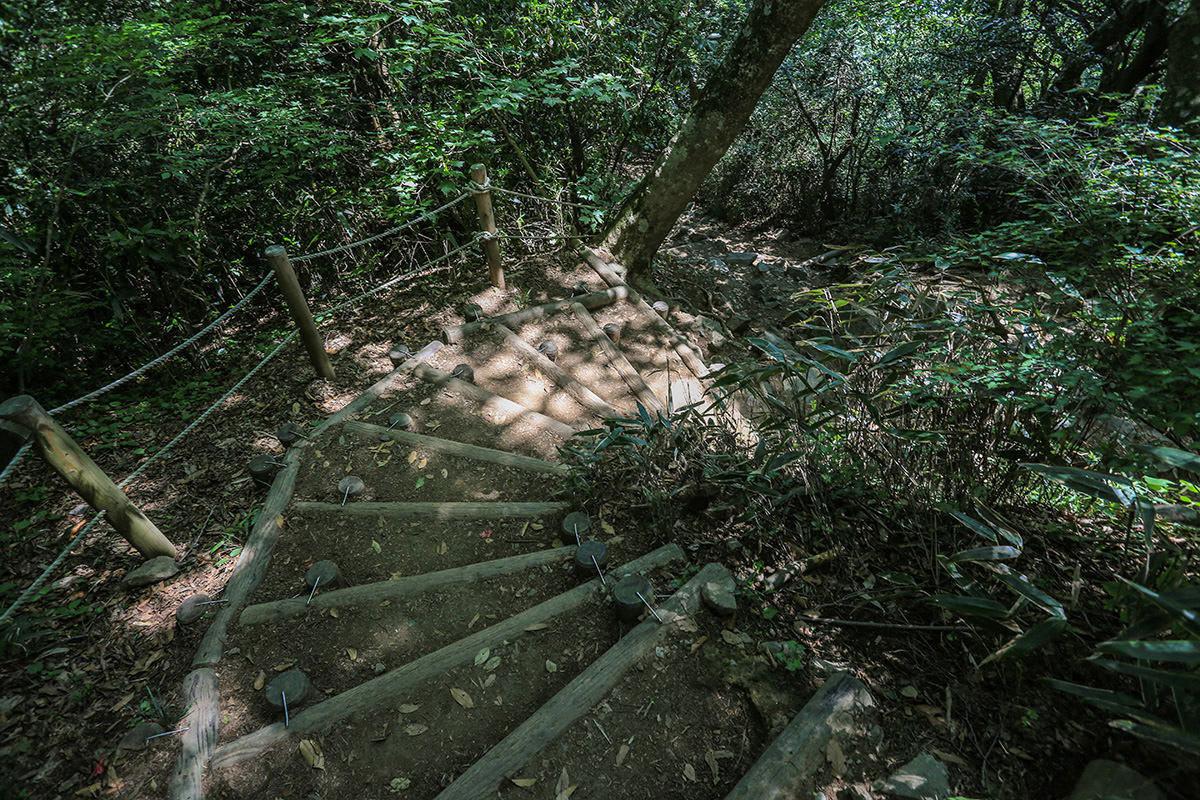 【筑波山 白雲橋コース】登山百景-御幸ヶ原コースの下山