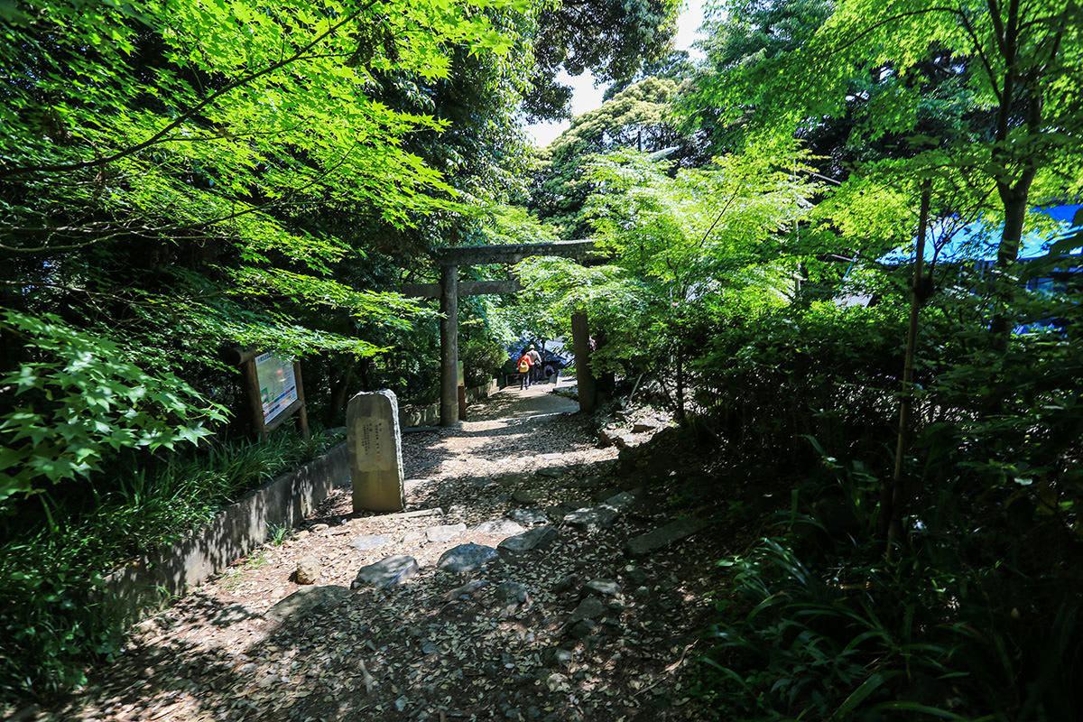 【筑波山 白雲橋コース】登山百景-下りてきた