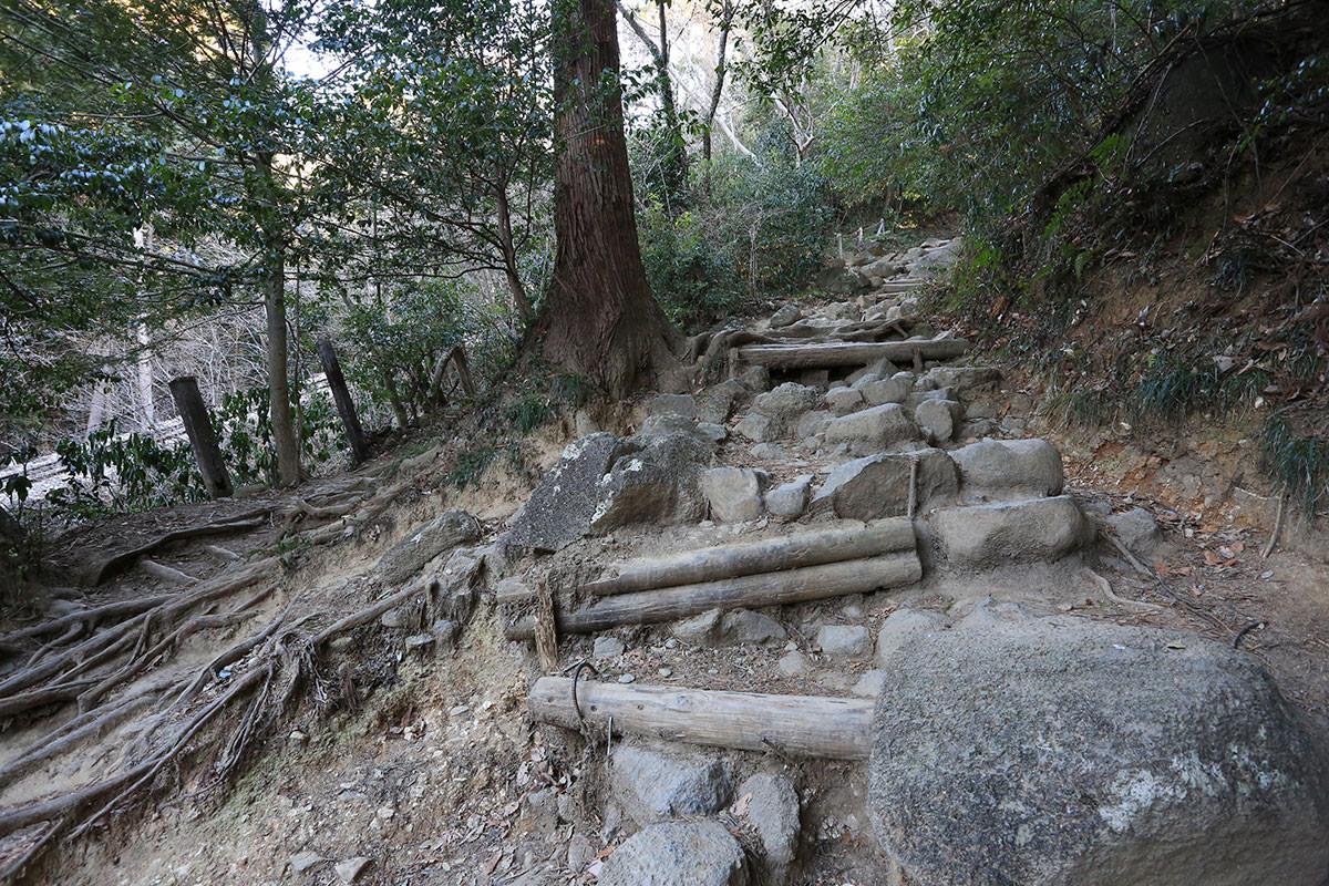 【筑波山】登山百景-わりと石も多い