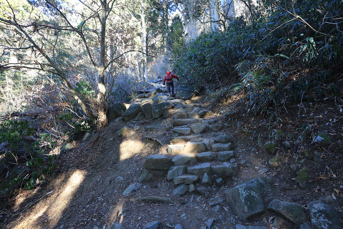 【筑波山】登山百景-階段も続く