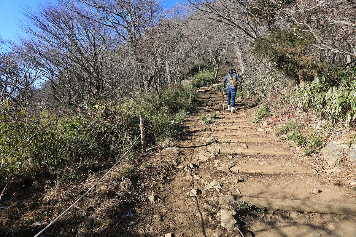 【筑波山】登山百景-男体山への登り