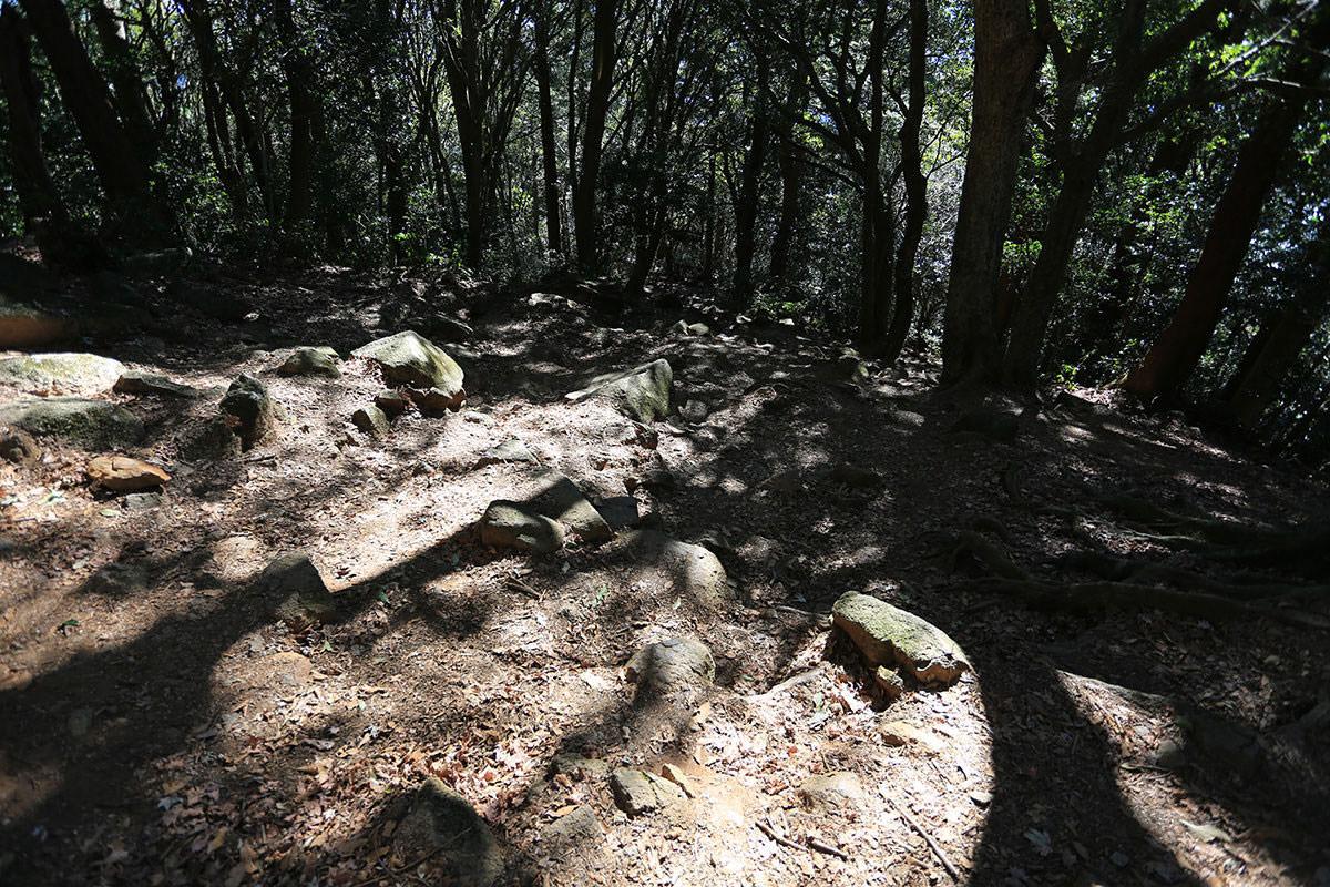 【筑波山】登山百景-下りが長い