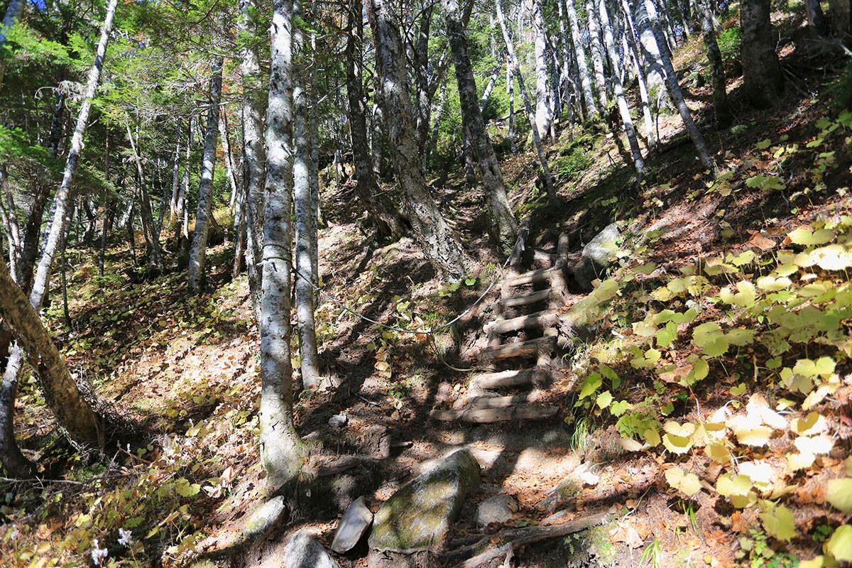 【空木岳】登山百景-大地獄の始まり