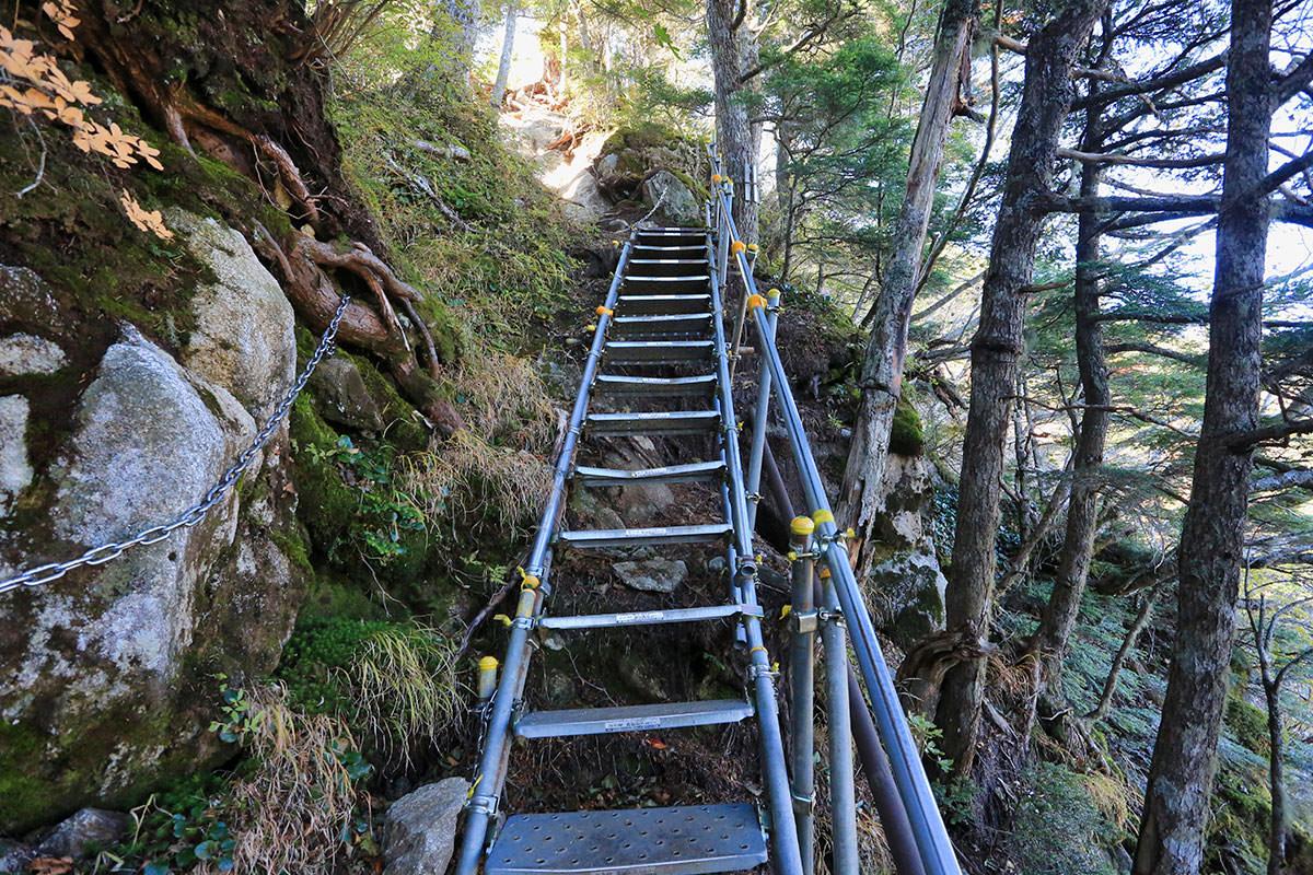 【空木岳】登山百景-また階段を登る