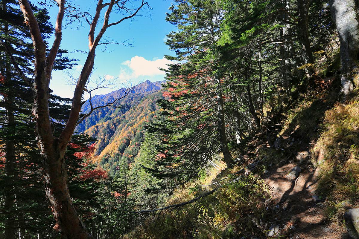 【空木岳】登山百景-紅葉が良い感じ