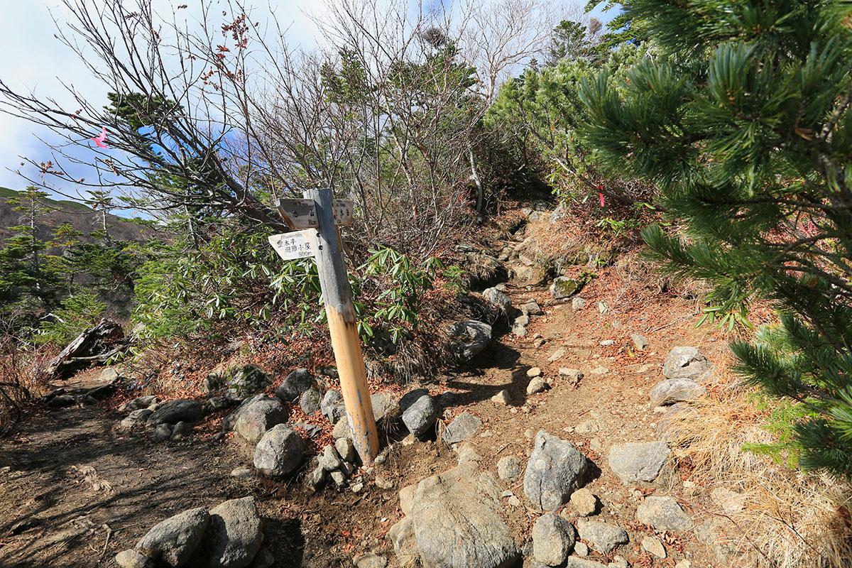 【空木岳】登山百景-空木平との分岐