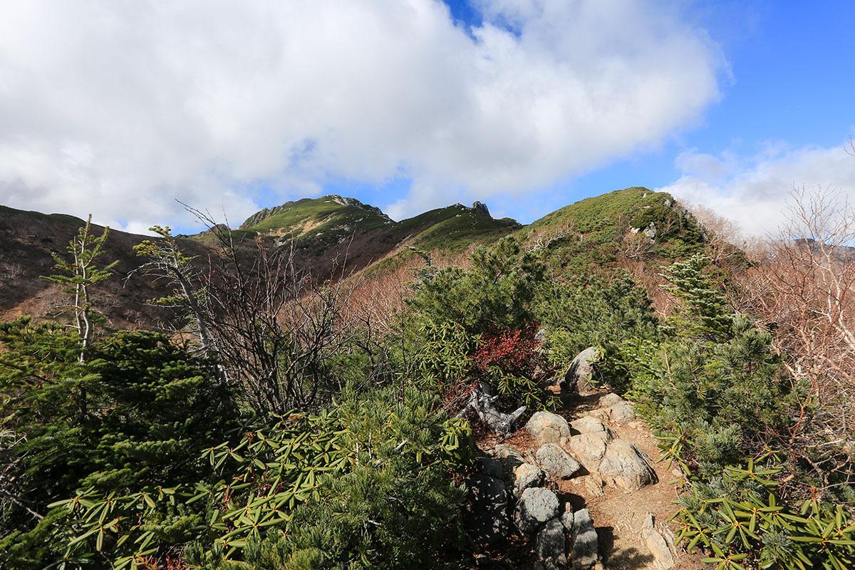 【空木岳】登山百景-空木岳が見えた