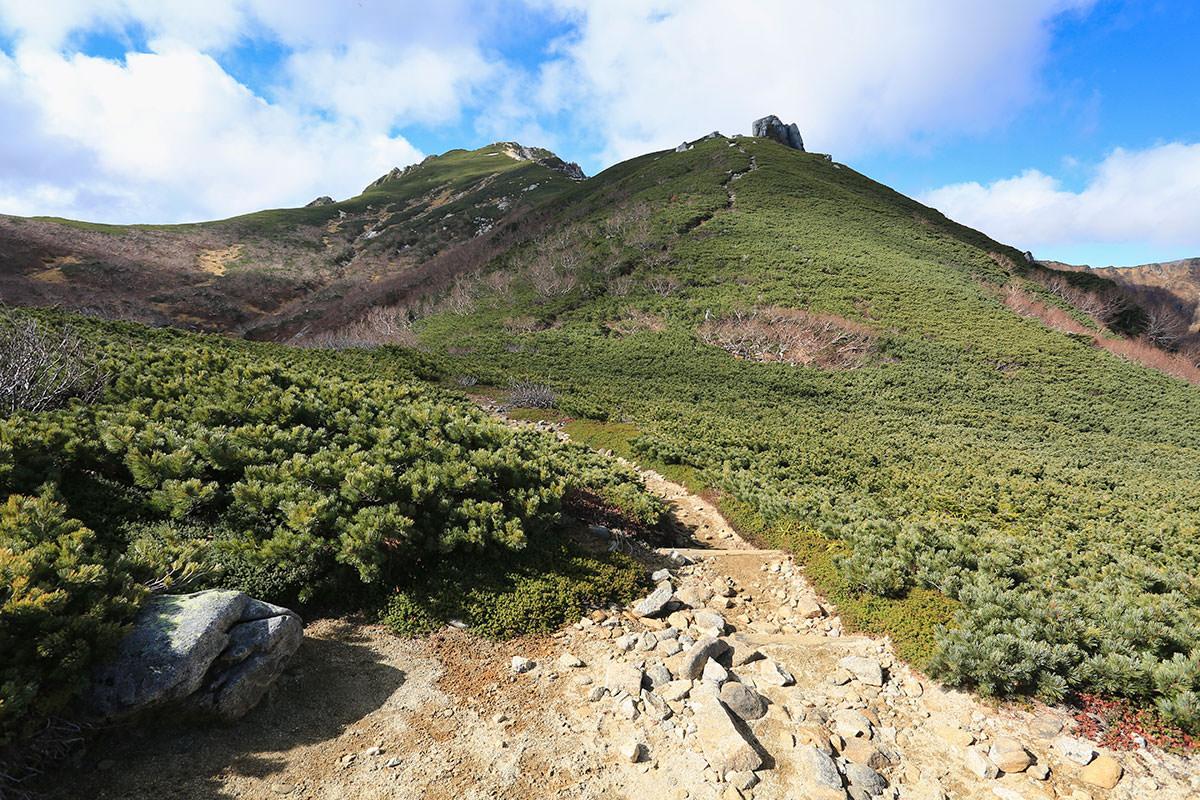 【空木岳】登山百景-ハイマツの中を歩く