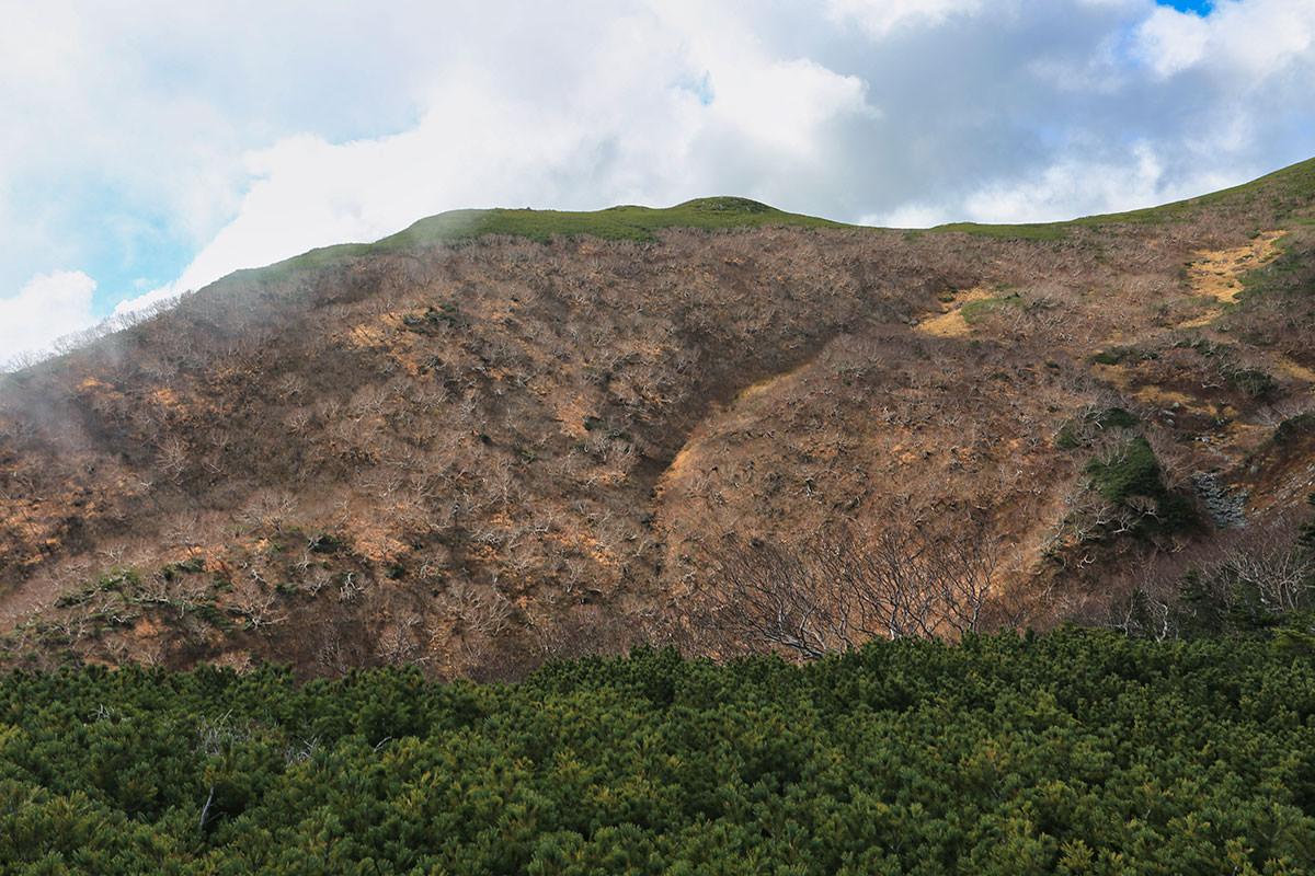 【空木岳】登山百景-葉っぱは落ちた