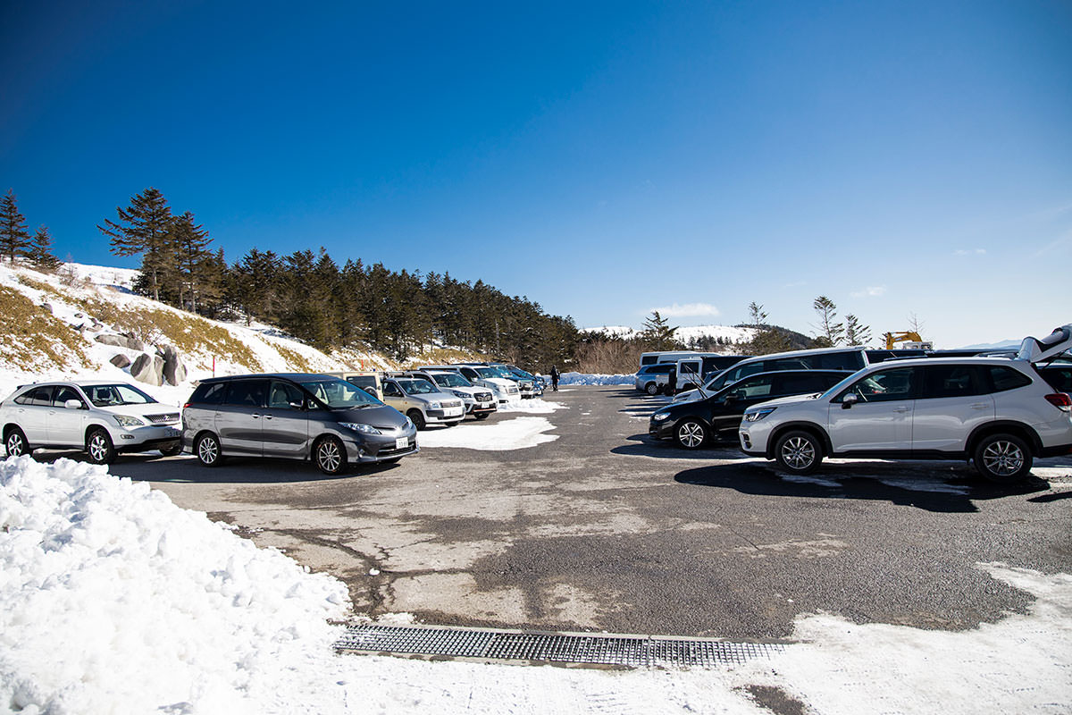 駐車場は車が多め