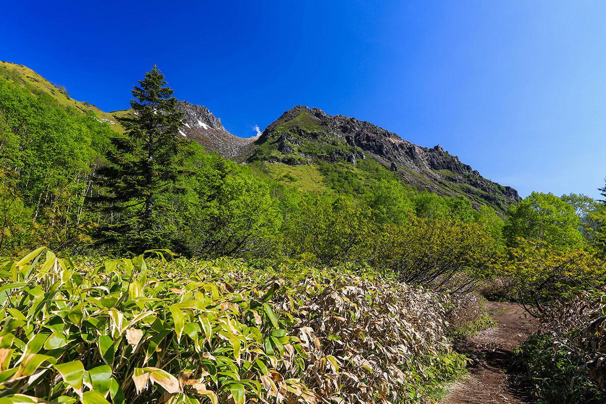 【焼岳 中ノ湯登山口】登山百景-焼岳が近い