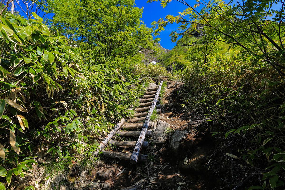 【焼岳 中ノ湯登山口】登山百景-階段を上がる