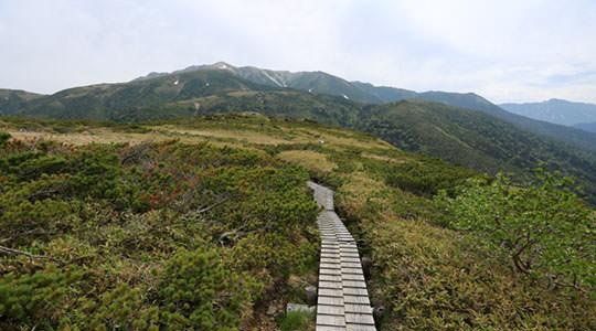 薬師岳 折立登山口
