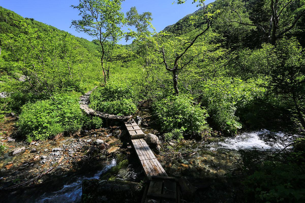 槍ヶ岳-小さな沢を渡って木道を歩いて行く