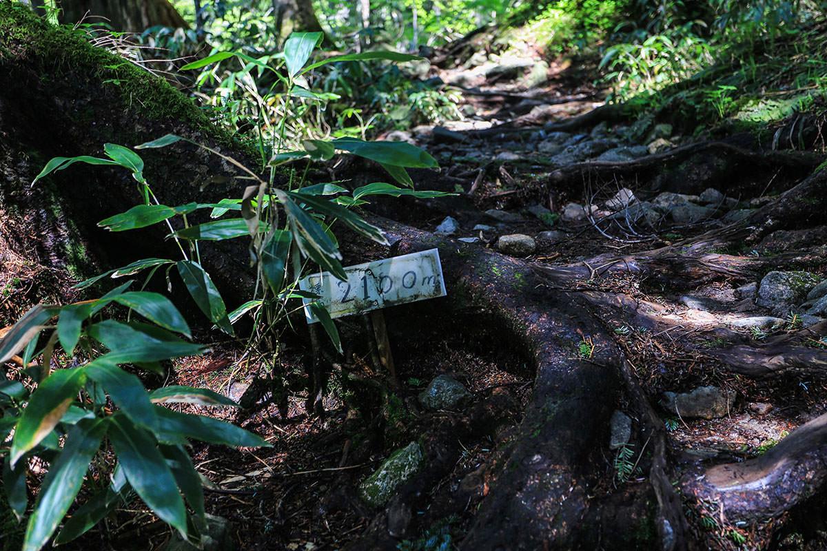 槍ヶ岳-標高が書いてある。いつの間にか新穂高から1000m近く登ってきた。