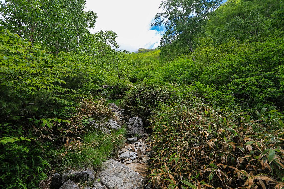 槍ヶ岳-いよいよ急登開始。ここから飛騨沢へと続いていく。