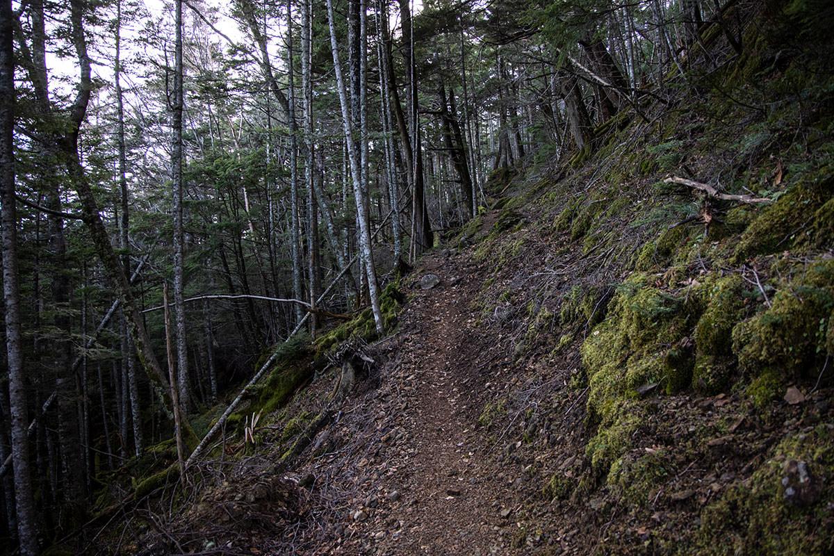 登りながら急斜面をトラバース